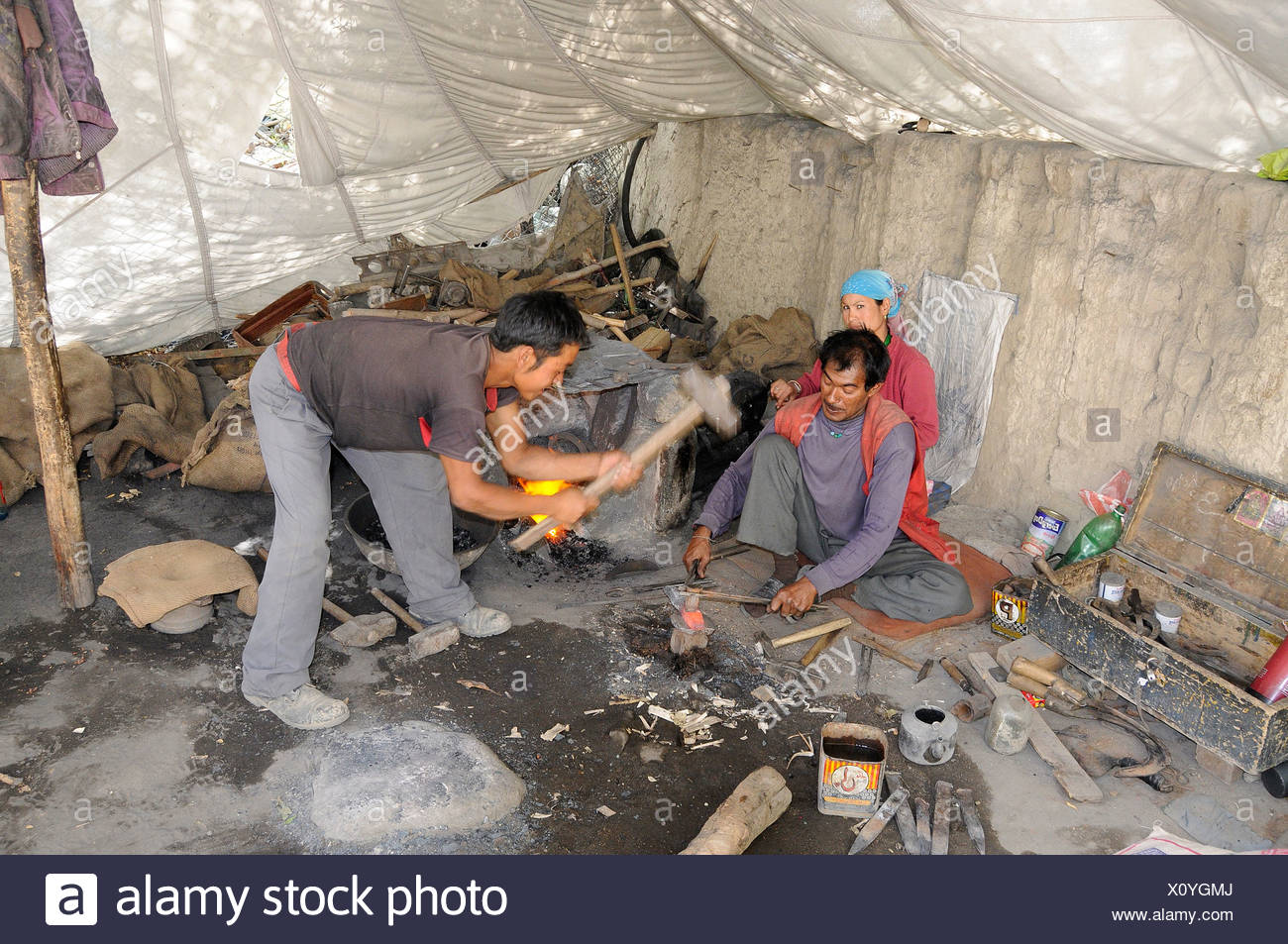 Blacksmith with his wife and assistant manufacturing sickles for the grain harvest in a tent, Shey, Ladakh, India, Himalayas, A - Stock Image