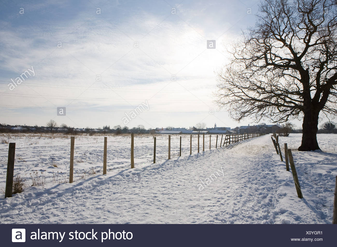 Path and field covered in snow - Stock Image