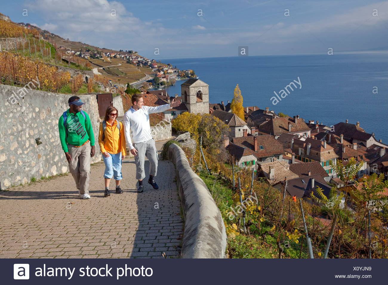 Traveller, Saint Saphorin, Lavaux, autumn, Castle, lake, lakes, canton, VD, Vaud, Lac Leman, wine, shoots, wine, footpath, walki - Stock Image