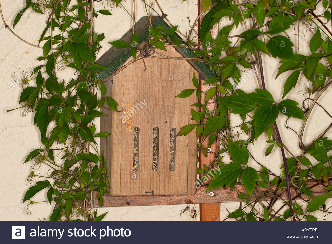 butterfly box in the garden serving as hibernation aid, Germany - Stock Image