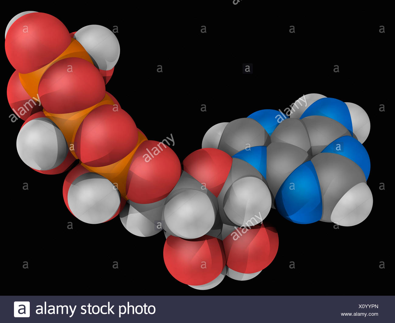 Adenosine triphosphate molecule Stock Photo