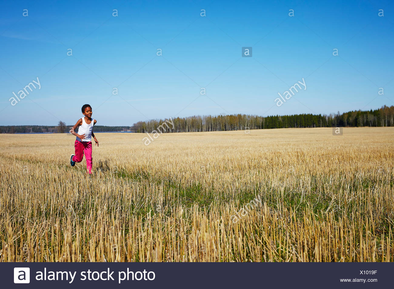 Sweden, Vastra Gotaland, Gullspang, Runnas, Boy (8-9) running in field - Stock Image