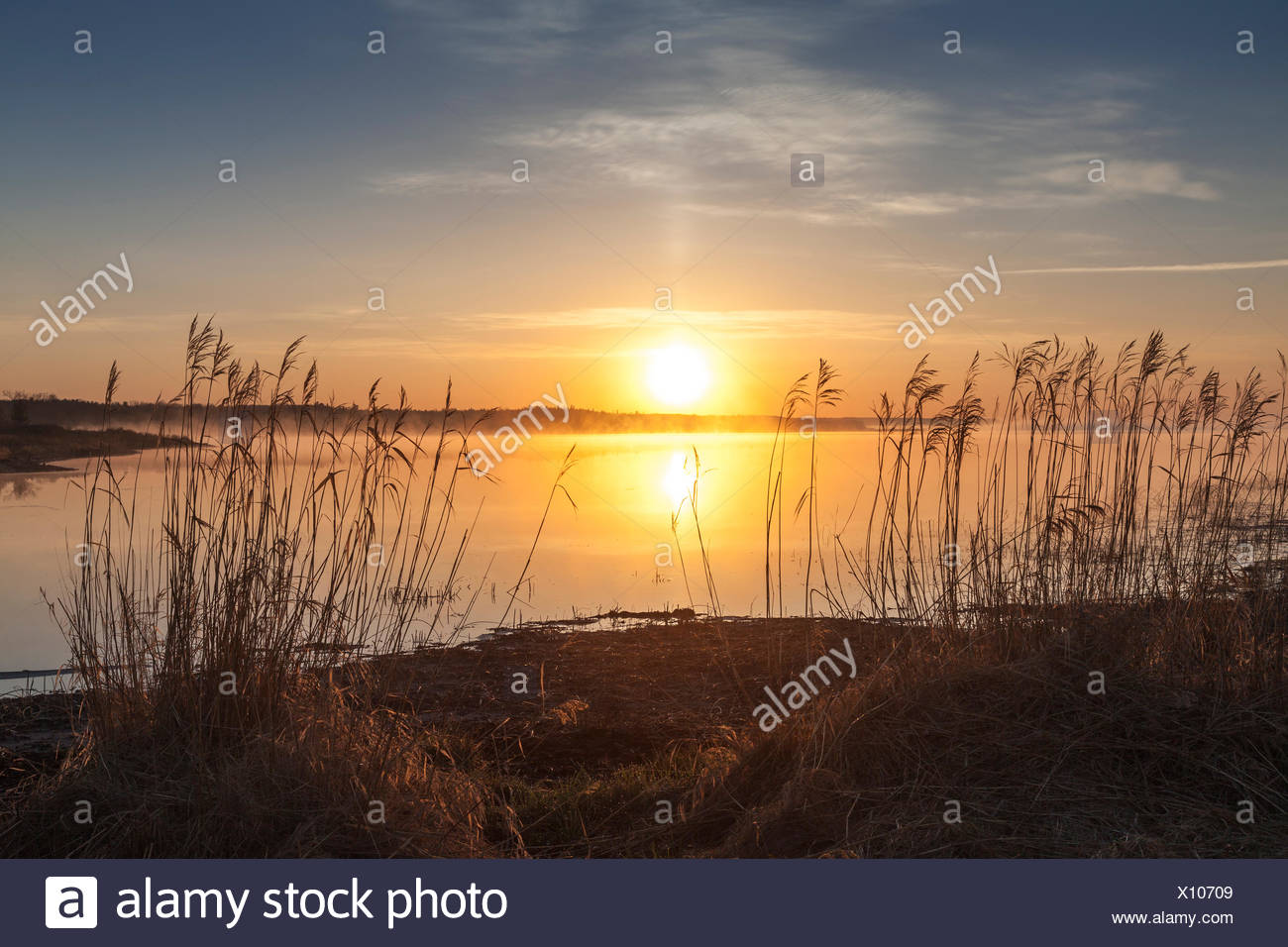The rising sun, Barrie Island, Manitoulin Island, Ontario, Canada - Stock Image