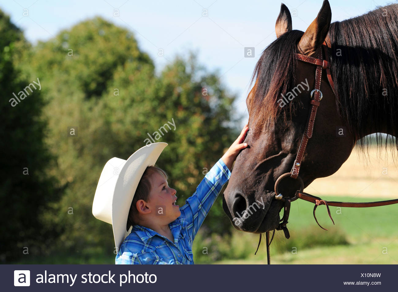 Toddler With Quarter Horse Stallion Cowboy Outfit Bridle Stock Photo Alamy