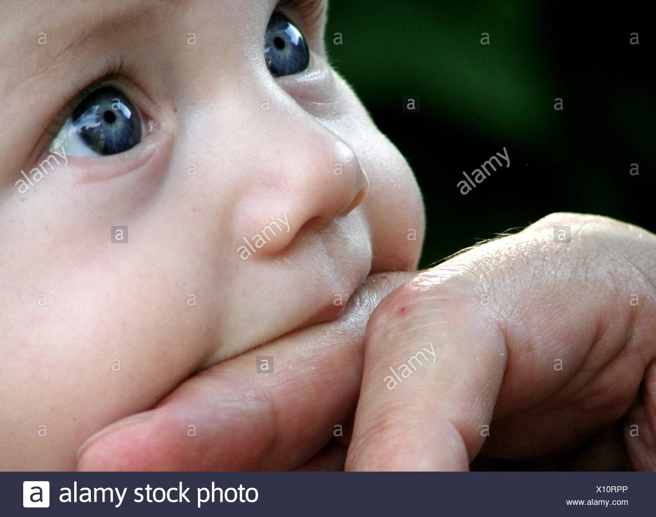 baby,finger - Stock Image
