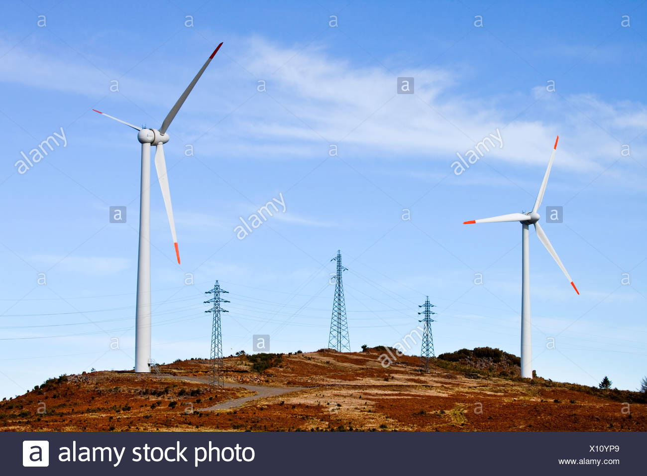 Wind turbines and electricity pylons on the Paul da Serra plateau, Madeira, Portugal, Europe - Stock Image