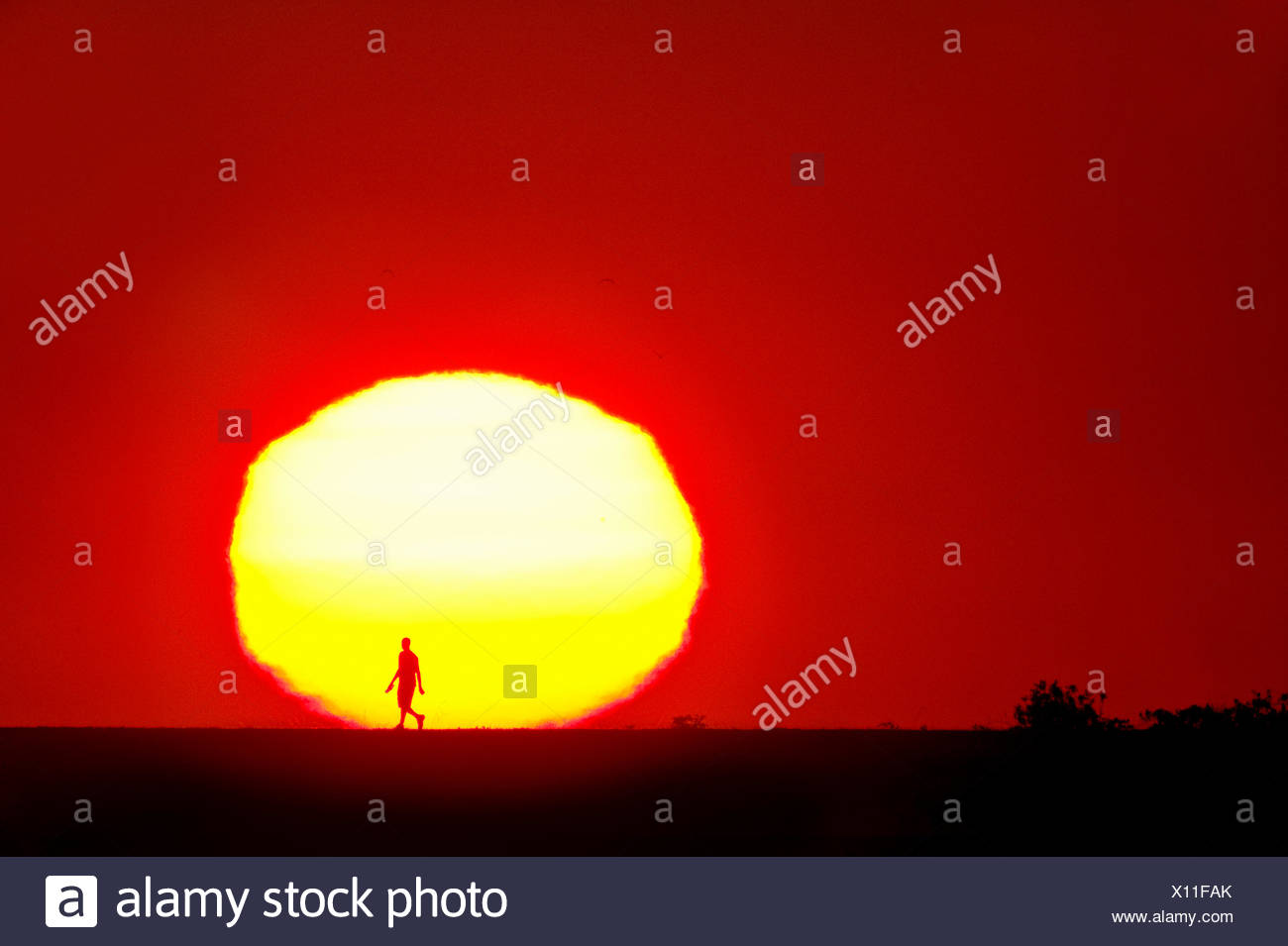 Man walking at sunset. Iona Island Regional park, Richmond, British Columbia, Canada. - Stock Image