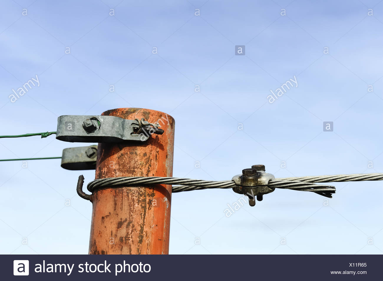 Tension wire with uprights in Vineyard - Stock Image