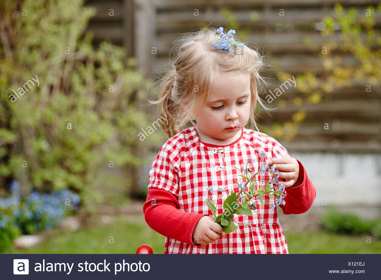 Young girl wearing gingham dress holding flowers Stock Photo