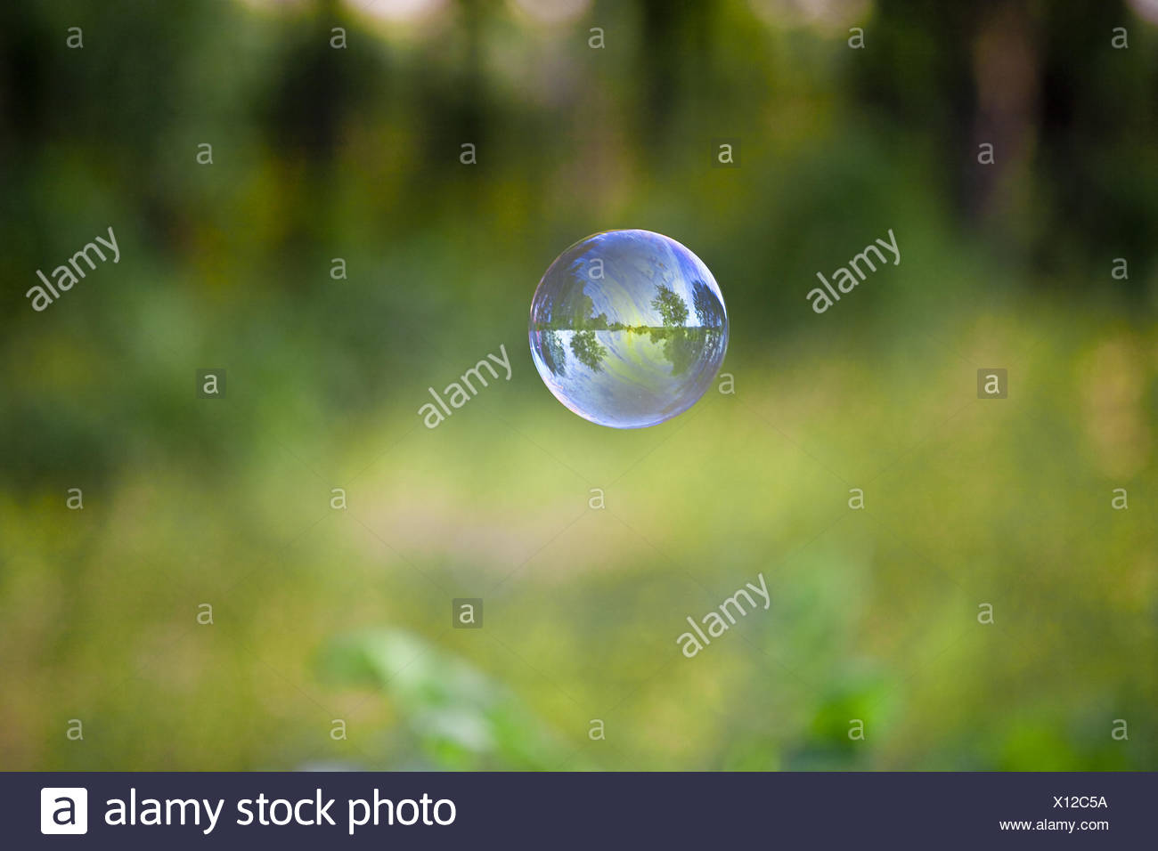 transparent bubble with reflections on a green - Stock Image