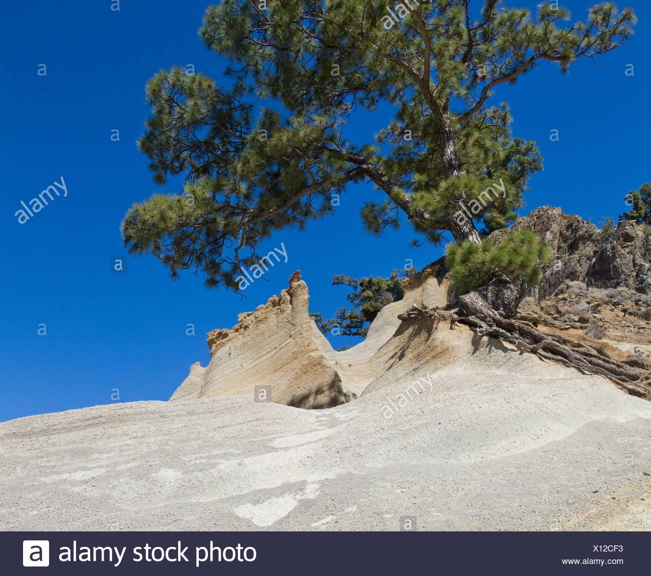 Spain Europe Tenerife Paisaje Lunar Vilaflor Canary islands Landscape scenery nature Spring Mountains Hills - Stock Image