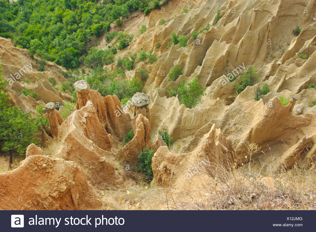 sandstone pyramids of Stob, Bulgaria, Kapatishkiya, Naturpark Rila-Kloster Stock Photo