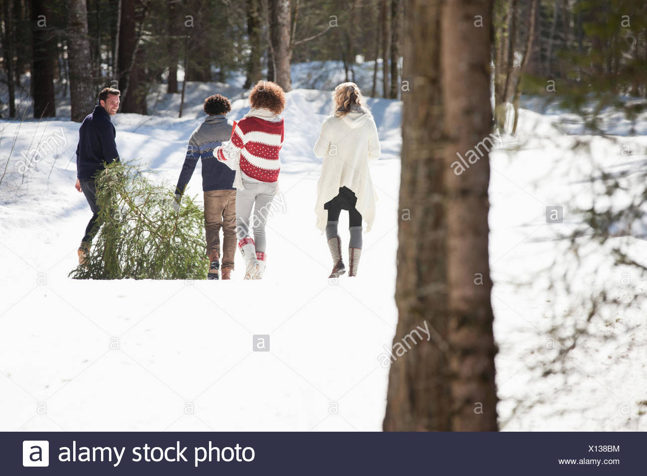 Four people with fresh cut Christmas tree - Stock Image