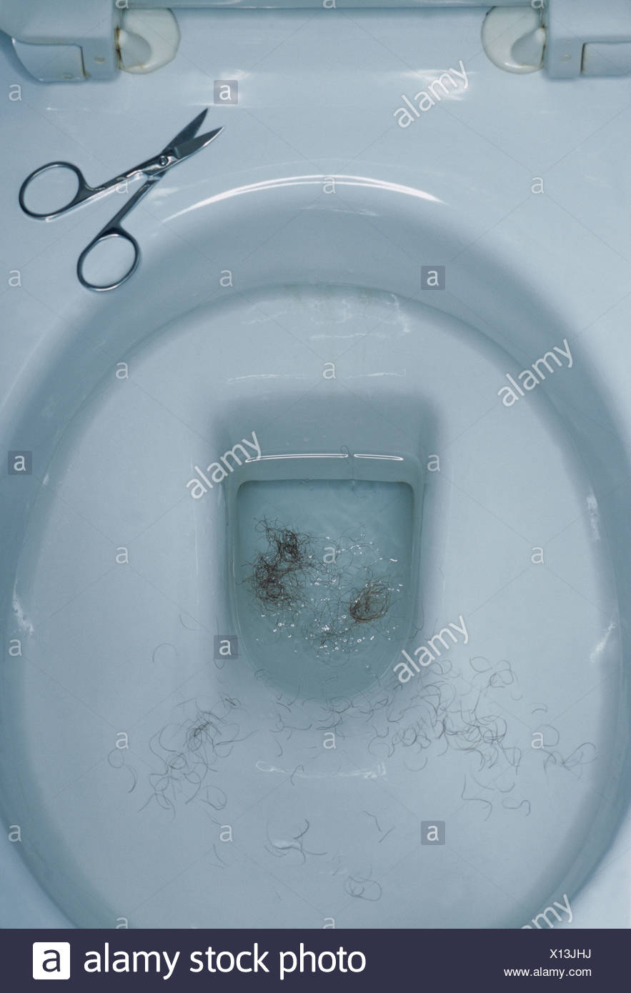Pubic hair in a toilet bowl - Stock Image