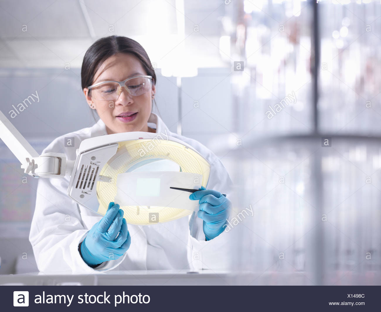 Scientist inspects product in laboratory - Stock Image