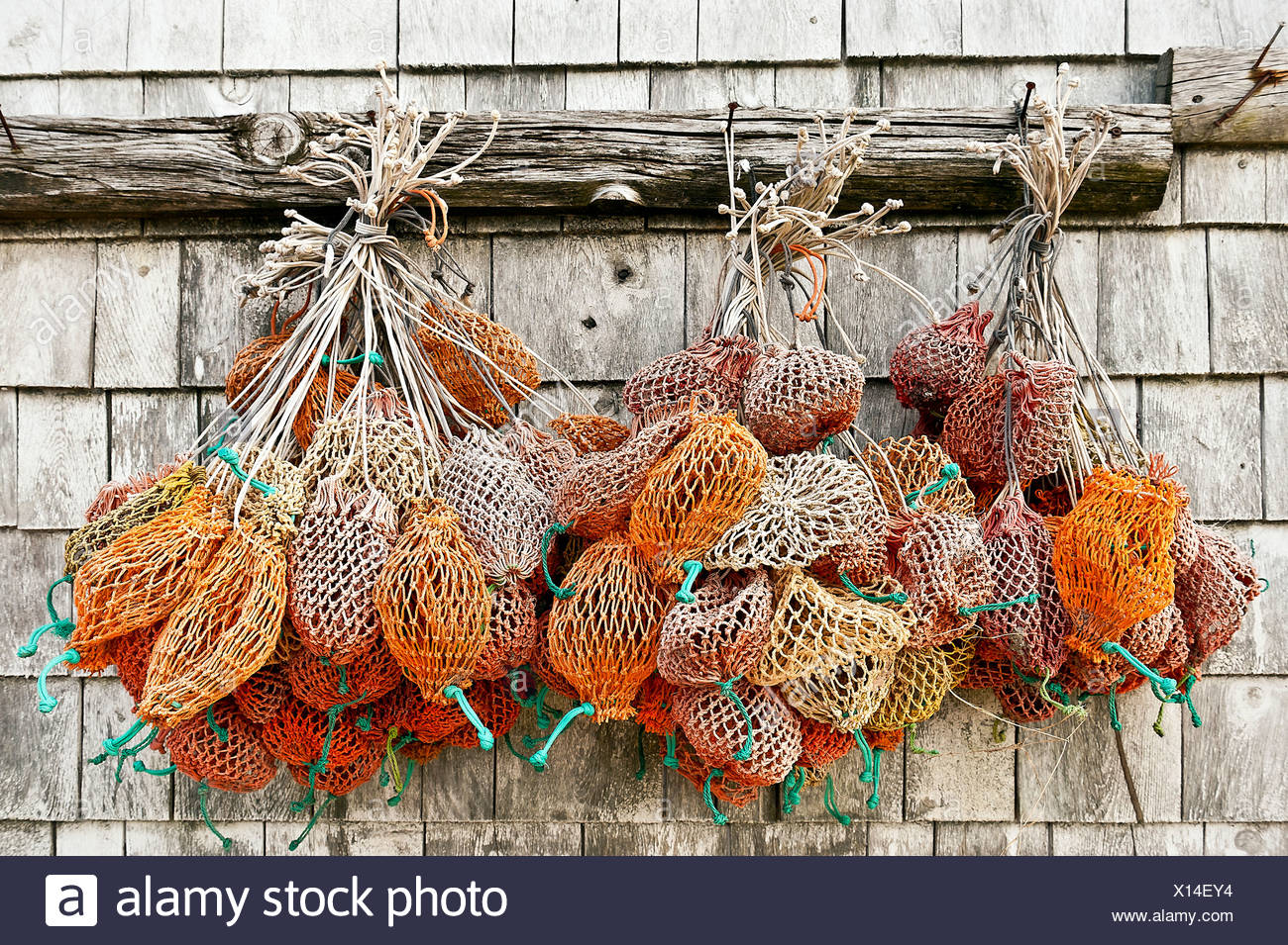 Bait bags hang from a dockside shed, Bass Harbor, Maine, USA - Stock Image