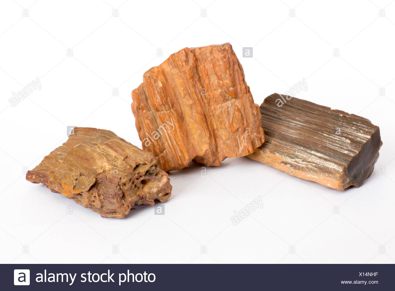 silicified pieces of wood polished by wind, Morocco - Stock Image