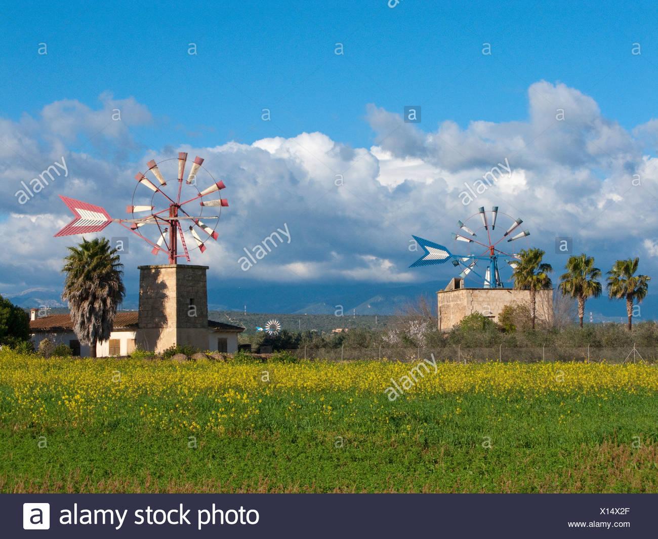 Wind mills, water pumping windmills near Sant Jordi, Majorca, Balearic islands, Spain, Europe - Stock Image