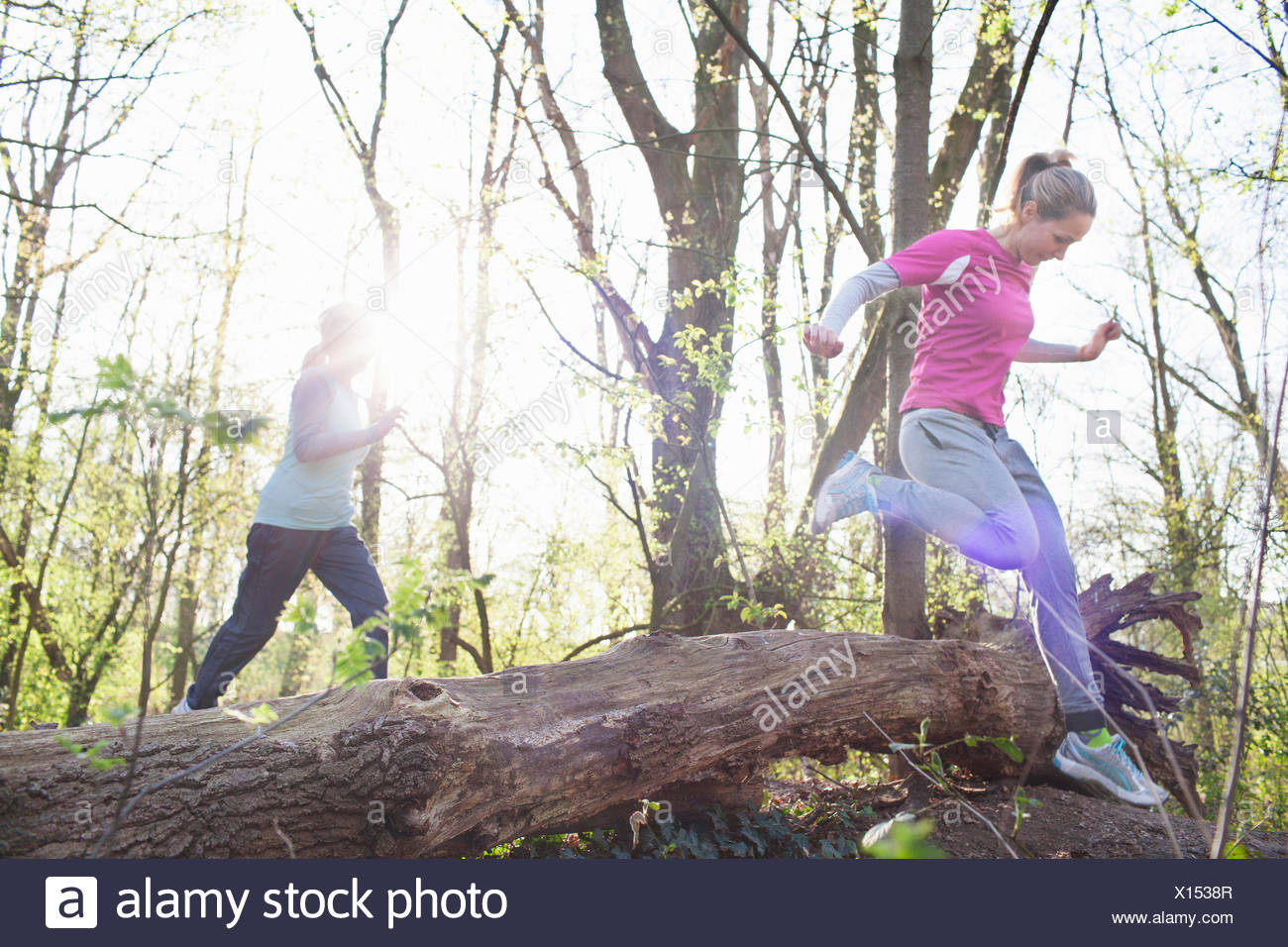 Women in forest jumping over fallen tree - Stock Image