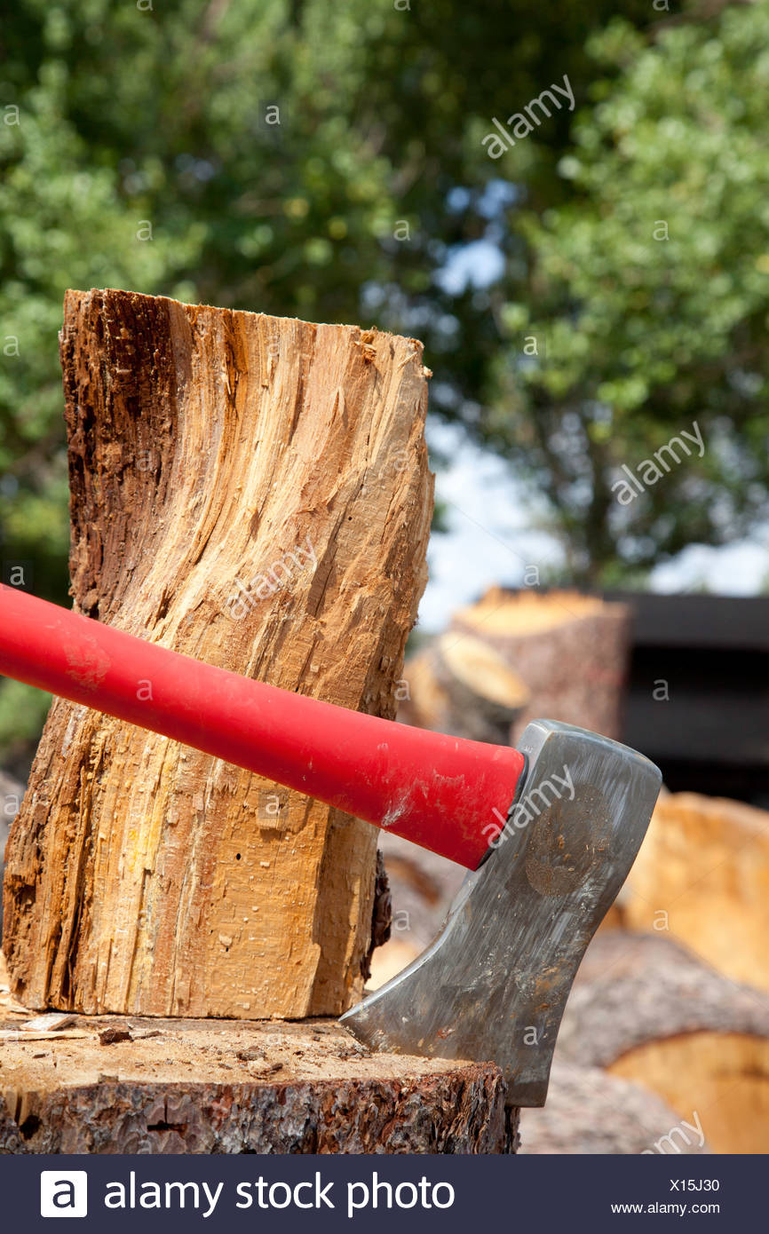 Close-up of axe wedged into tree stump - Stock Image