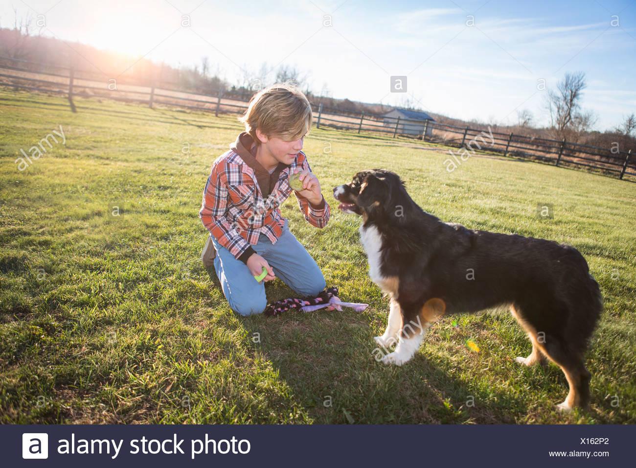 Boy training dog - Stock Image