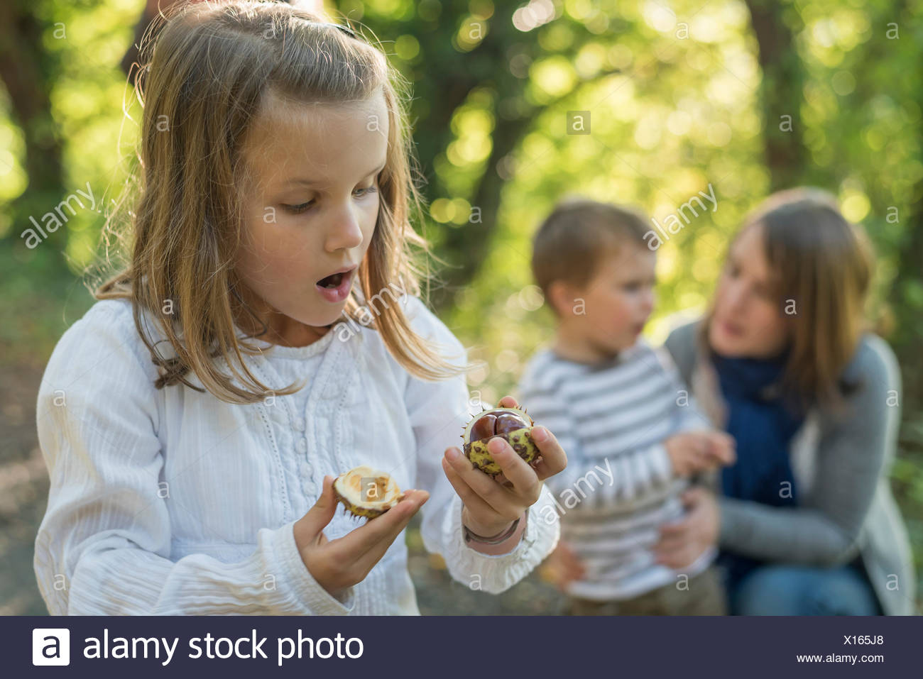 Astonished girl looking at chestnut in her hand - Stock Image