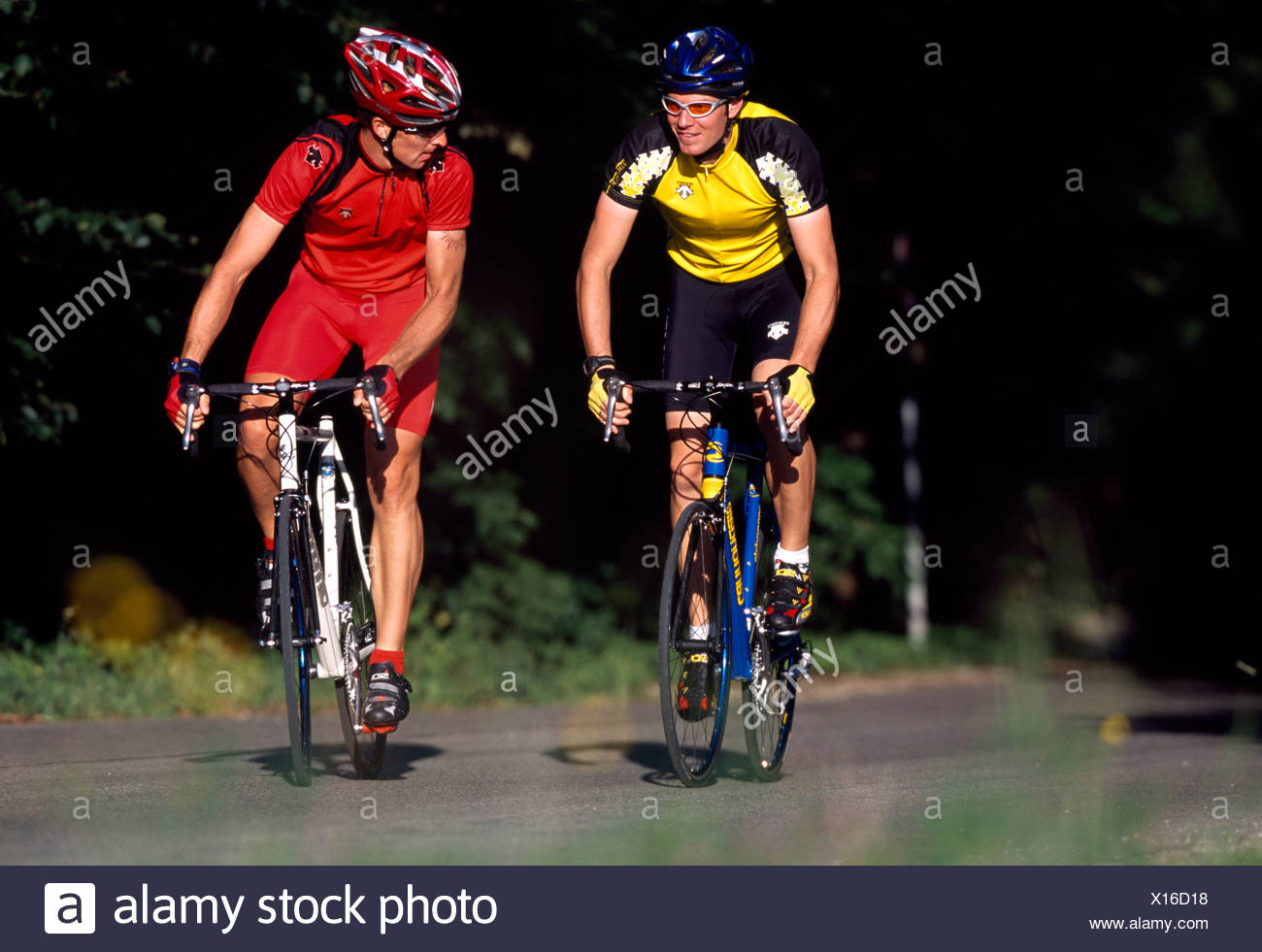 Racing cyclists, Lake Starnberg, Bavaria, Germany - Stock Image