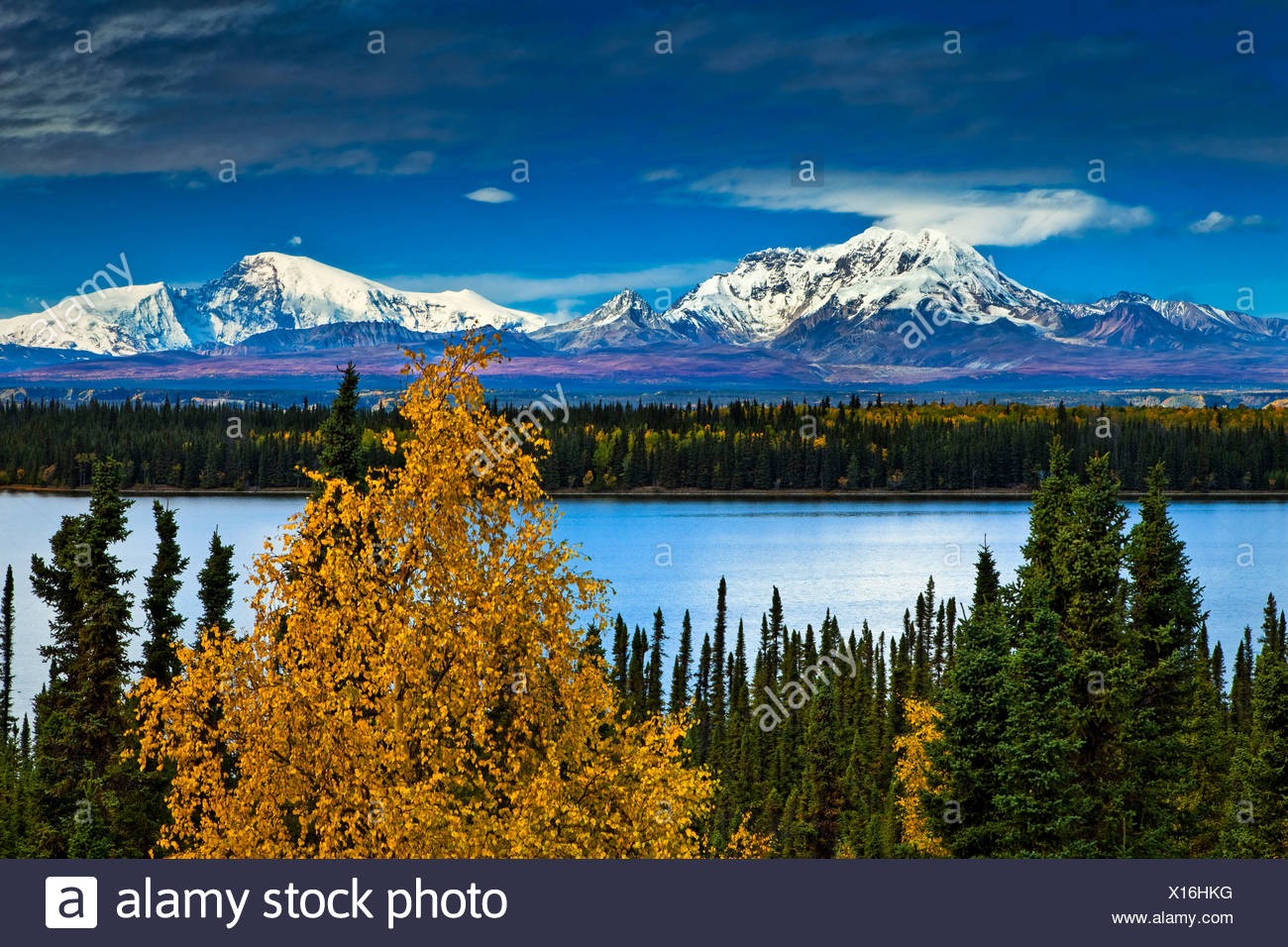 Scenic view of Mt. Sanford and Mt. Drum with Willow Lake in the foreground, Wrangell St. Elias National Park & Preserve, Alaska - Stock Image