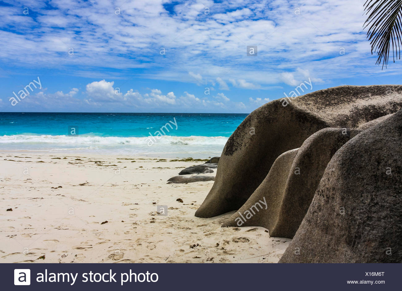 Beach, Anse Georgette, Praslin, Seychelles, Indian, Ocean, Africa Stock Photo