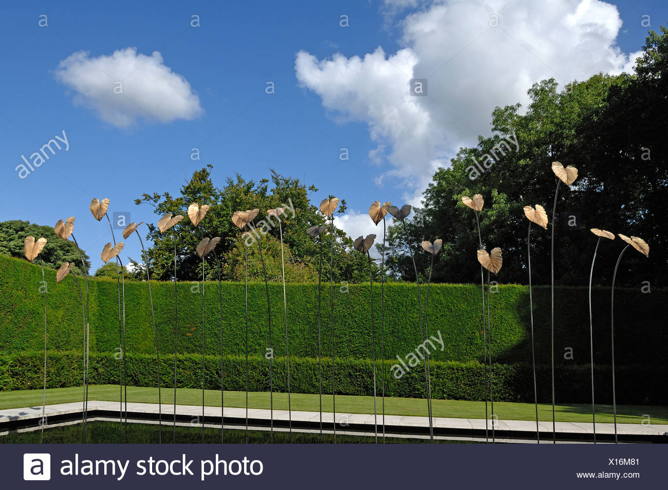 Modern Art by Simon Allison, 'Gold-plated bronze leaves on steel rods', in Kiftsgate Court Gardens, Mickleton, Chipping Campden - Stock Image