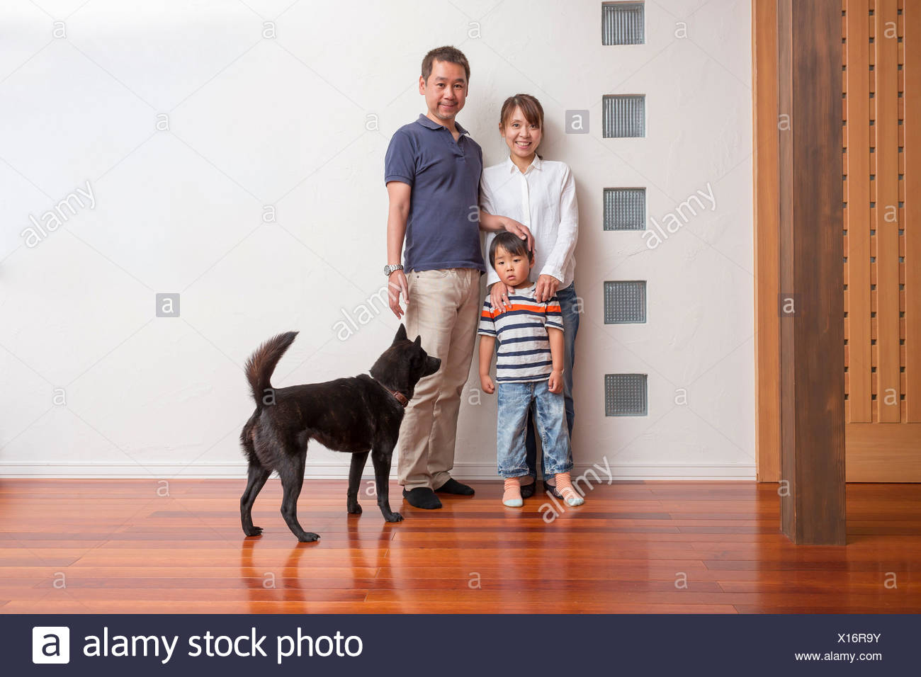 Family with young son and pet dog - Stock Image
