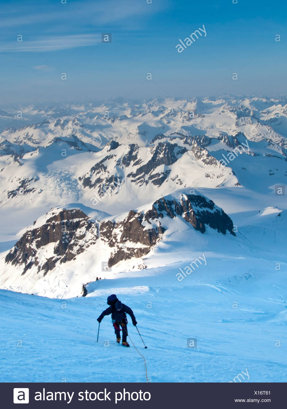 Climber leaning into high winds on northwest ridge of Mount Iliamna above Tongue Glacier and Chigmit Mountains, Spring, Alaska - Stock Image