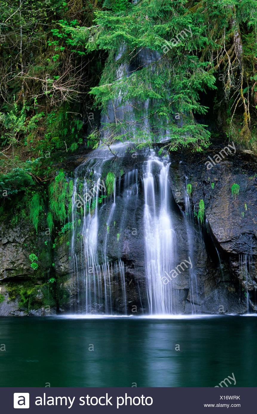 Falls into Siletz River, Moonshine County Park, Oregon. - Stock Image