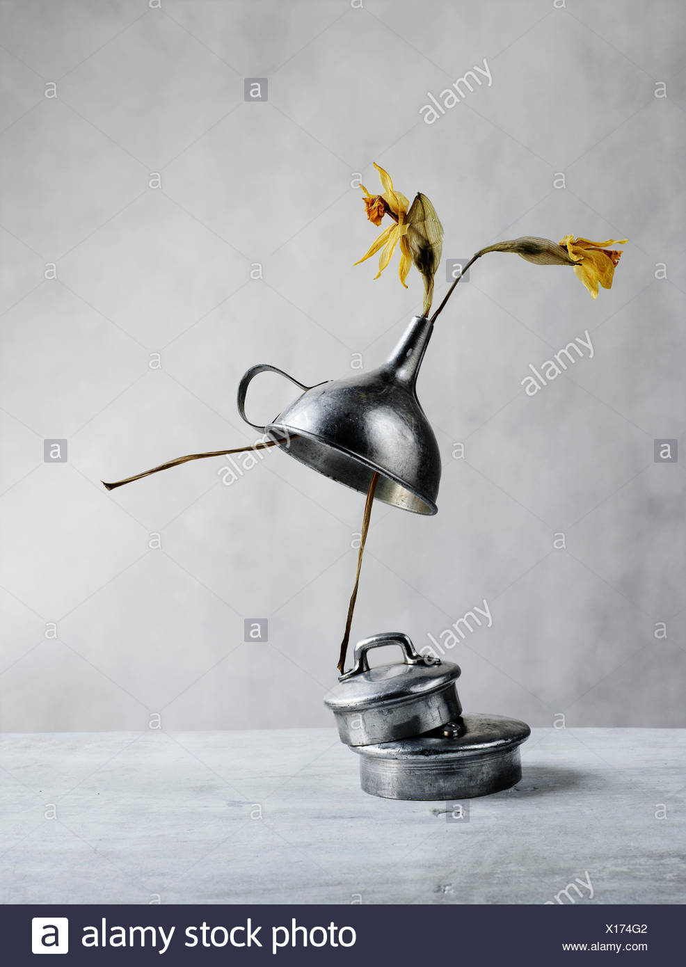 The Dancer - Still Life with Tin Kitchen Utensils and Withered Tulips - Stock Image