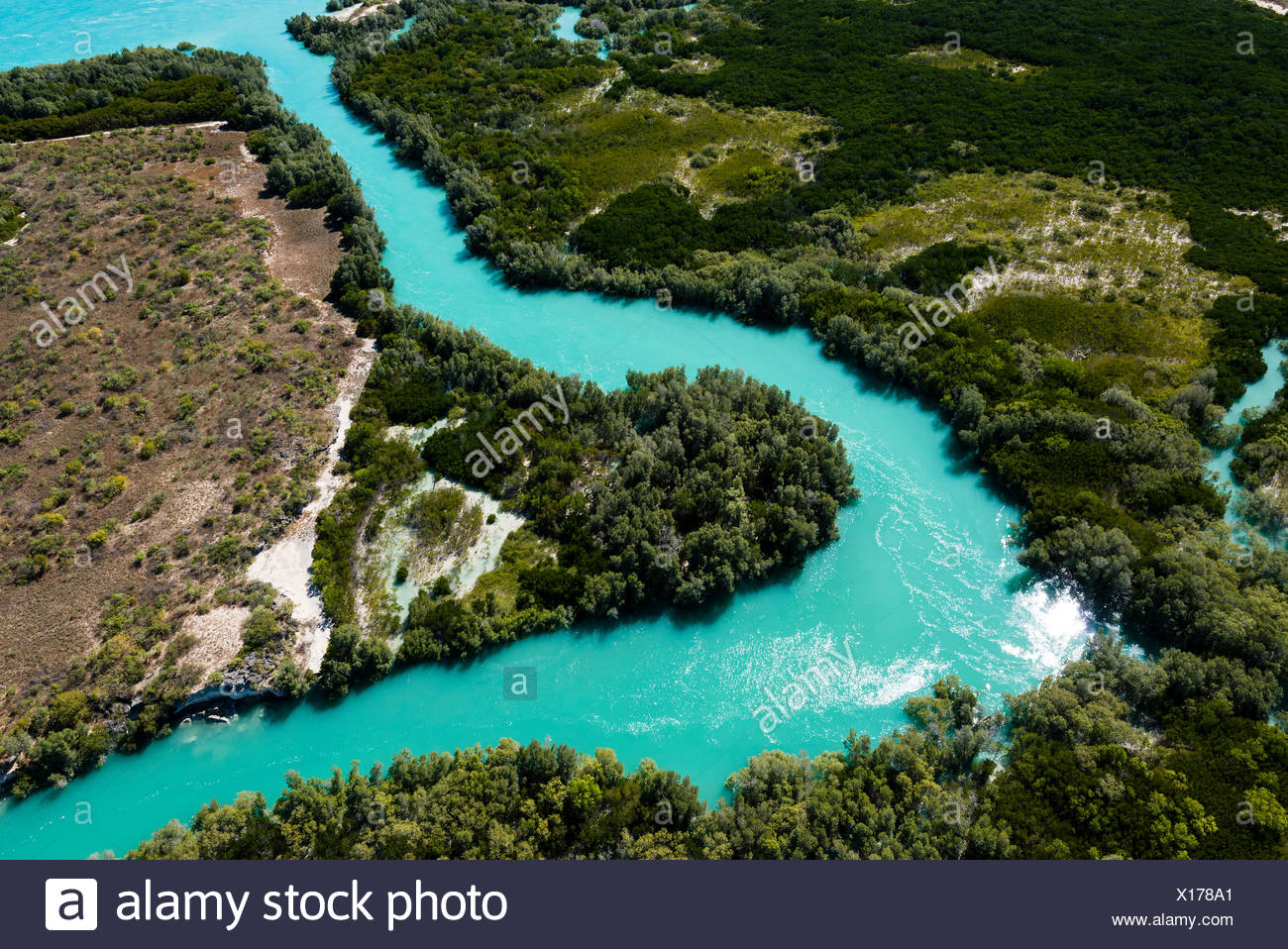 A turquoise tidal river winding it's way through mangroves in a tidal estuary. - Stock Image