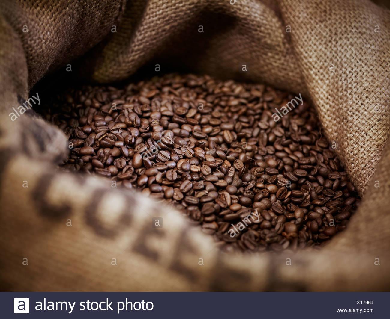 Coffee beans in burlap sack - Stock Image