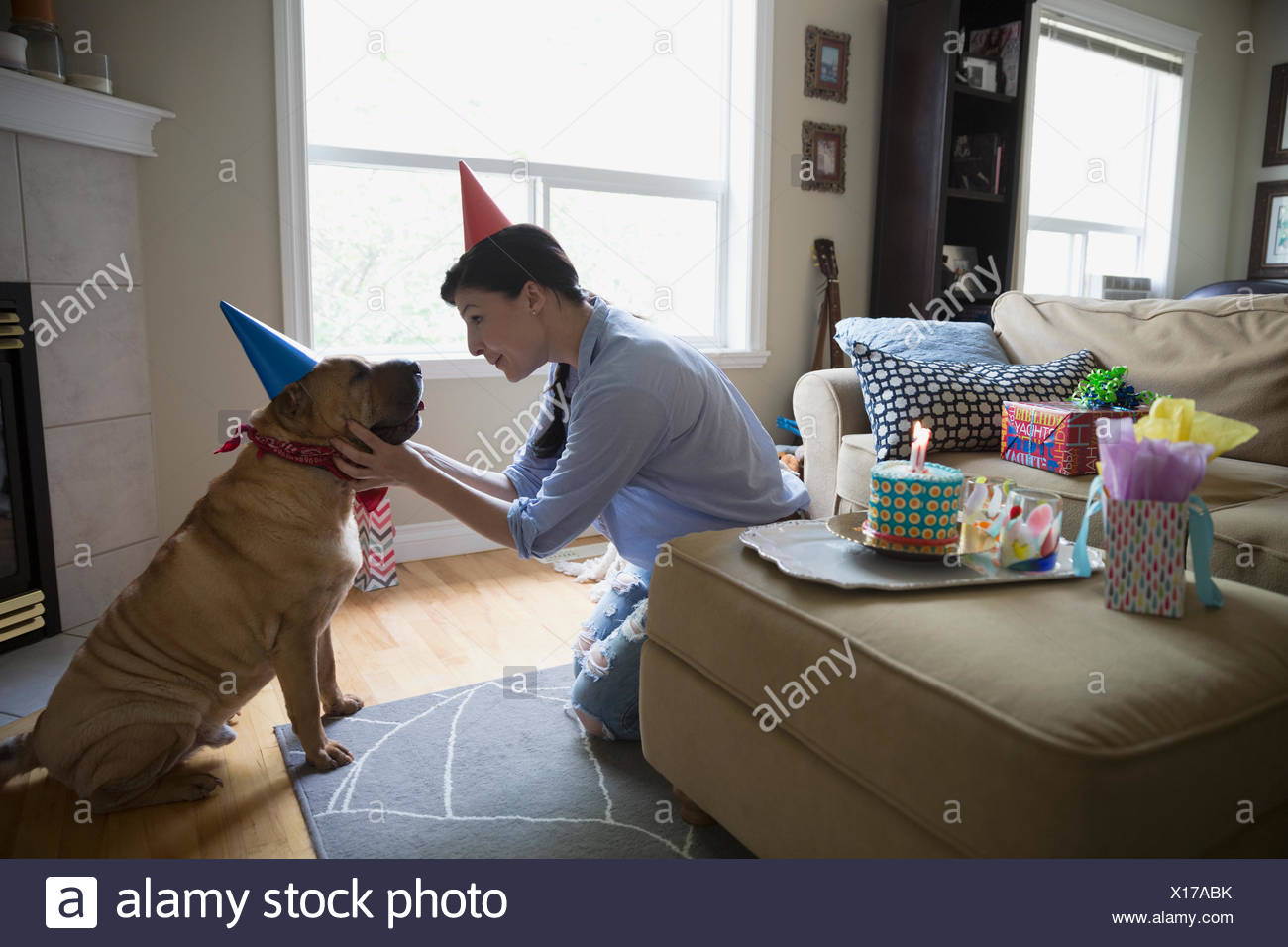 Woman and dog celebrating birthday face to face - Stock Image