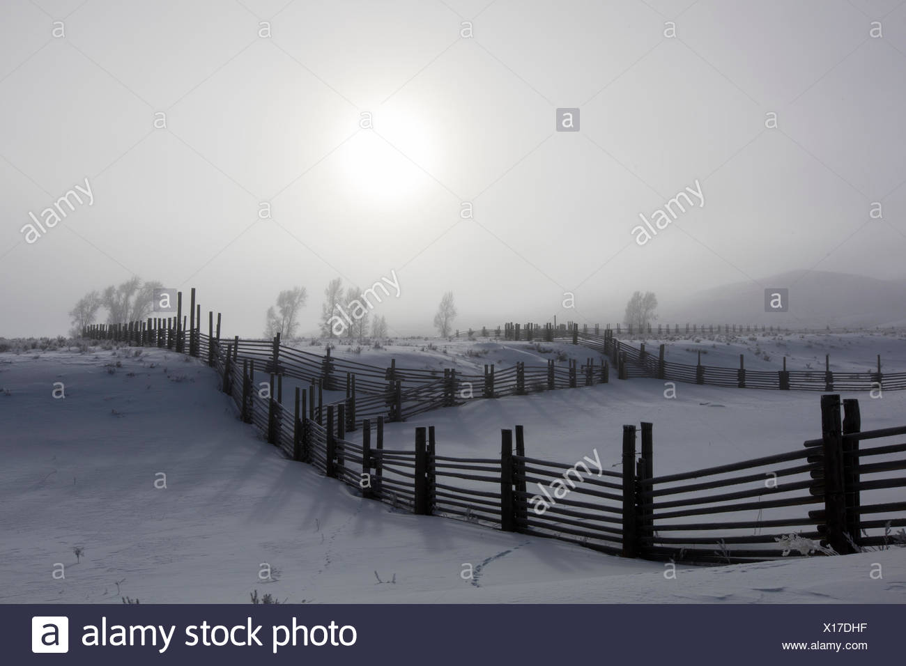 Wooden fences separate snow covered pastureland. Stock Photo