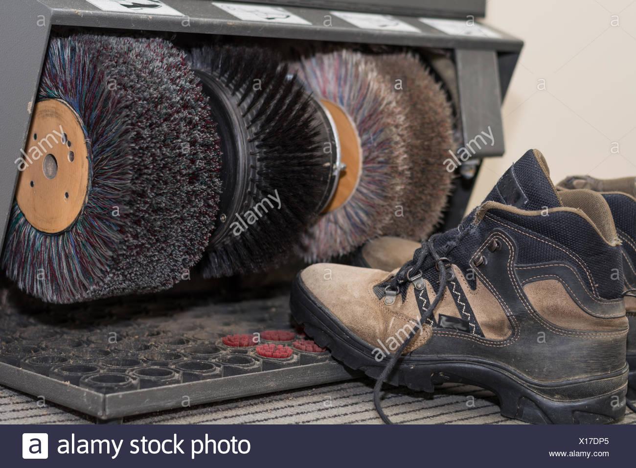 Schuhe Reinigen Stock Photos Schuhe Reinigen Stock Images Alamy