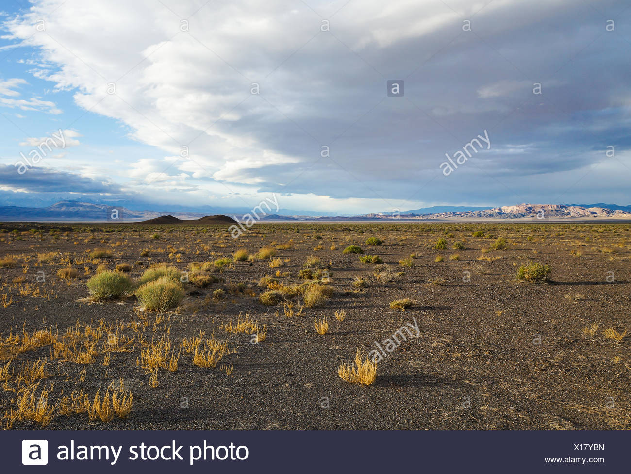 Endless view - Stock Image