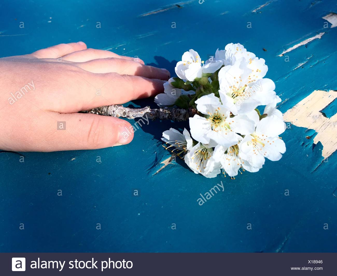 Flowers for Mommy - Stock Image