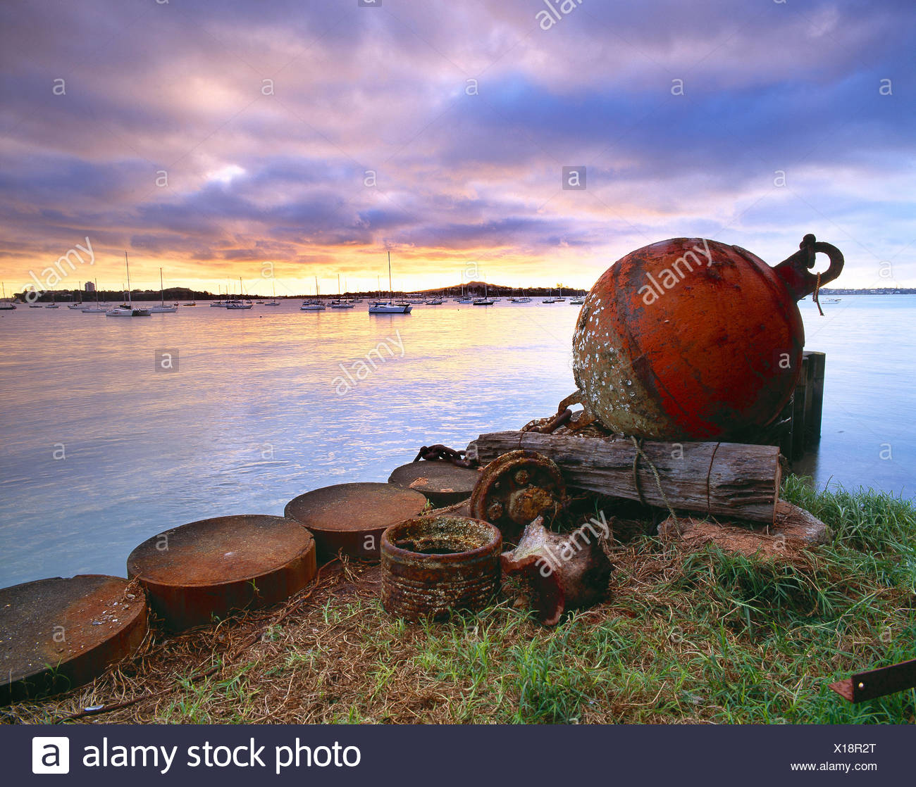 New Zealand. Auckland. Northcote. Rusting bouy on waterfront at dawn. - Stock Image