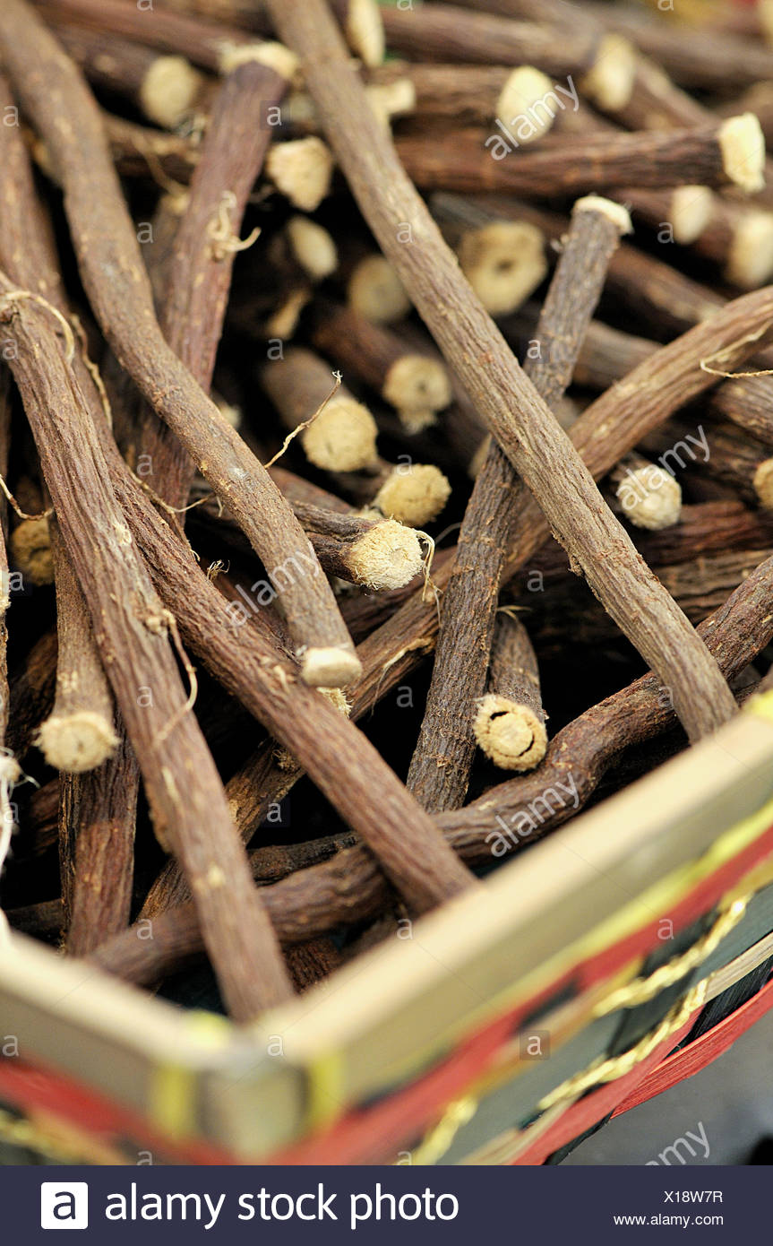 Licorice root sticks. Chocolate and Cacao Show, Barcelona, Catalonia, Spain - Stock Image