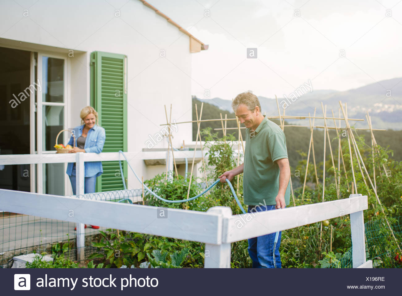 Mature man watering vegetable garden with hosepipe - Stock Image