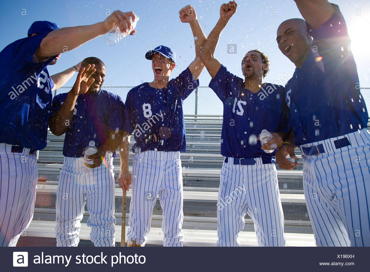 Baseball team, in blue uniform, punching air in victory post match, cheering lens flare - Stock Image
