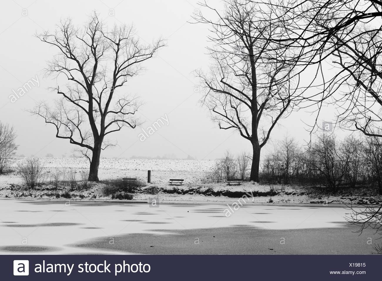 Winterimpression an zugefrohrenem See Stock Photo