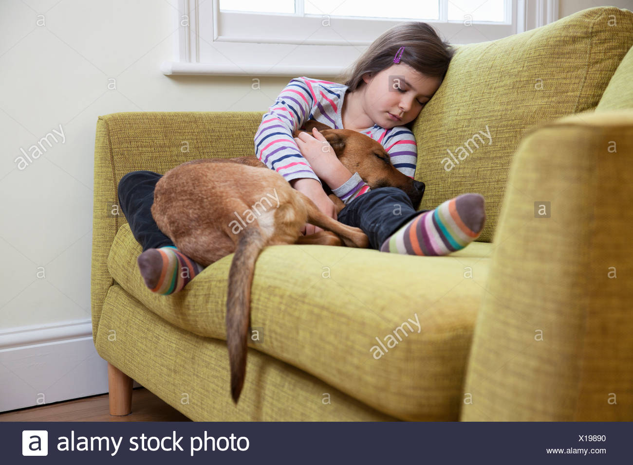 Young girl sleeping with her dog - Stock Image