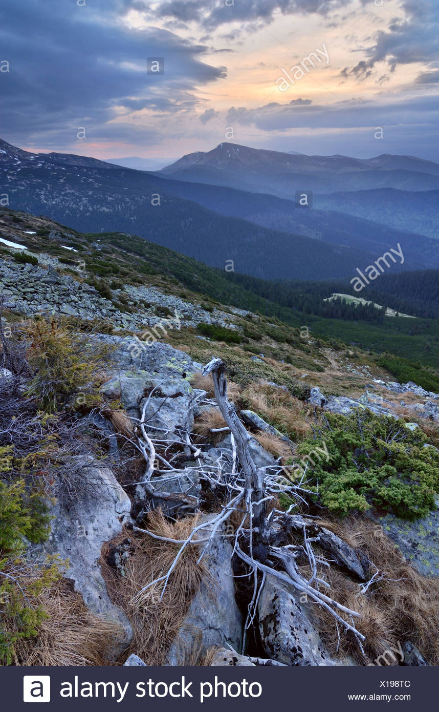 Chornogora Ridge in the Carpathian Mountains view at Petros Mountain - Stock Image