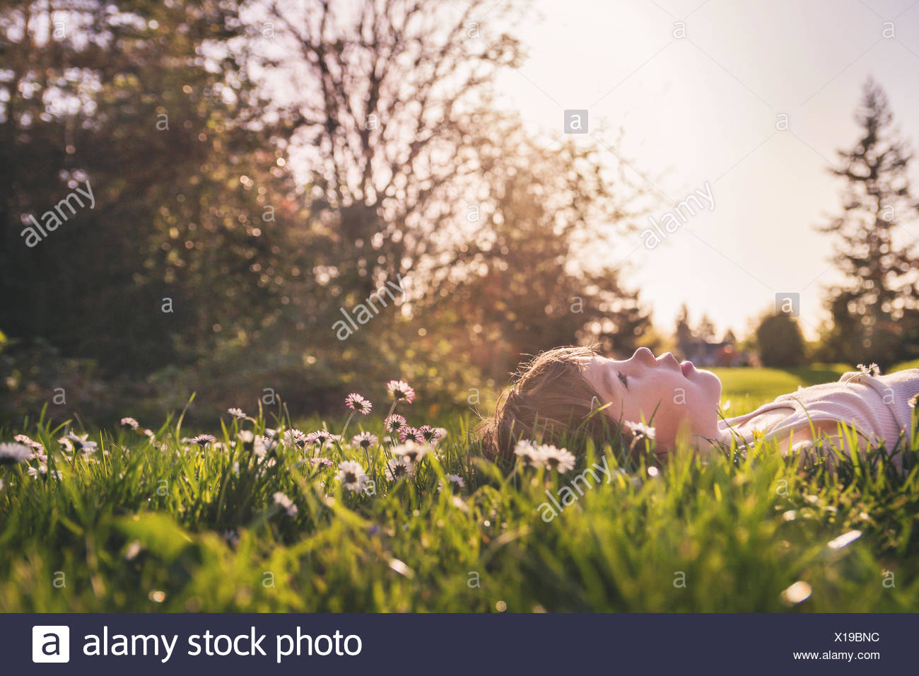 Boy laying in a field of flowers looking up at the sky - Stock Image
