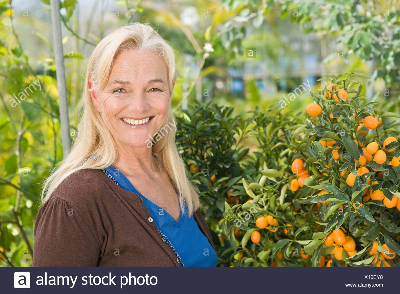 Mature woman by fruit tree - Stock Image